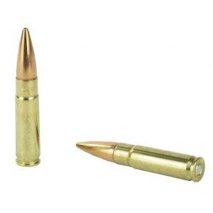 hornady american gunner 300 for sale